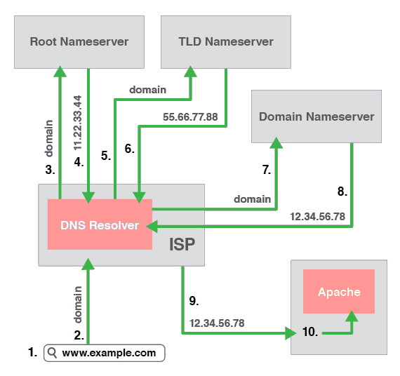 DNS Resolution